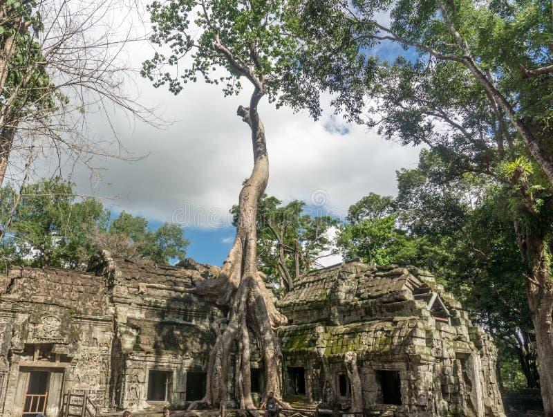 Angkor Thom nära Angkor Wa arkivbilder