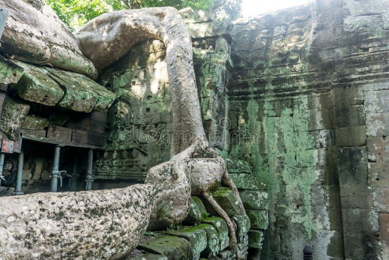 Angkor Thom nära Angkor Wa royaltyfria foton