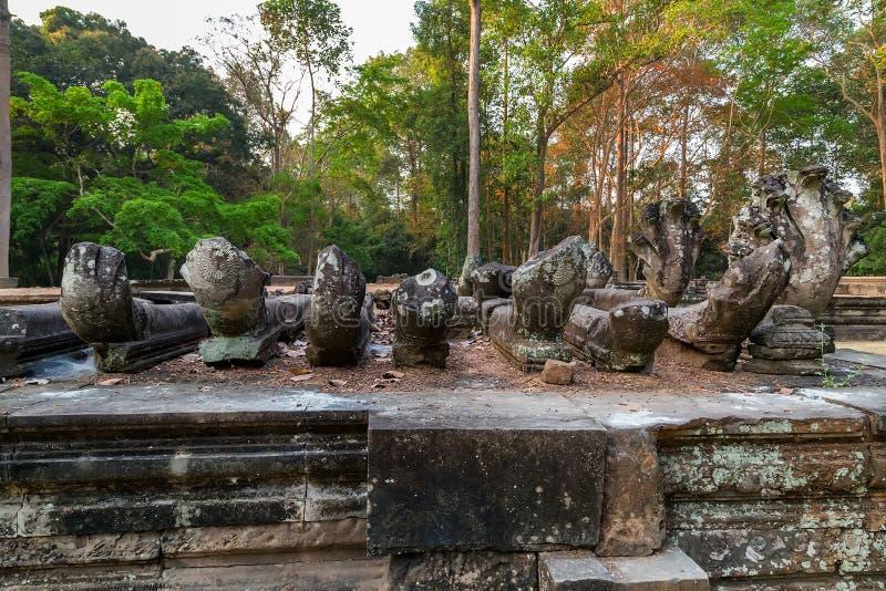 Download Angkor Vat, Complexe De Temple De Khmer, Asie Siem Reap, Cambodge Image stock - Image du visage, antique: 56476397