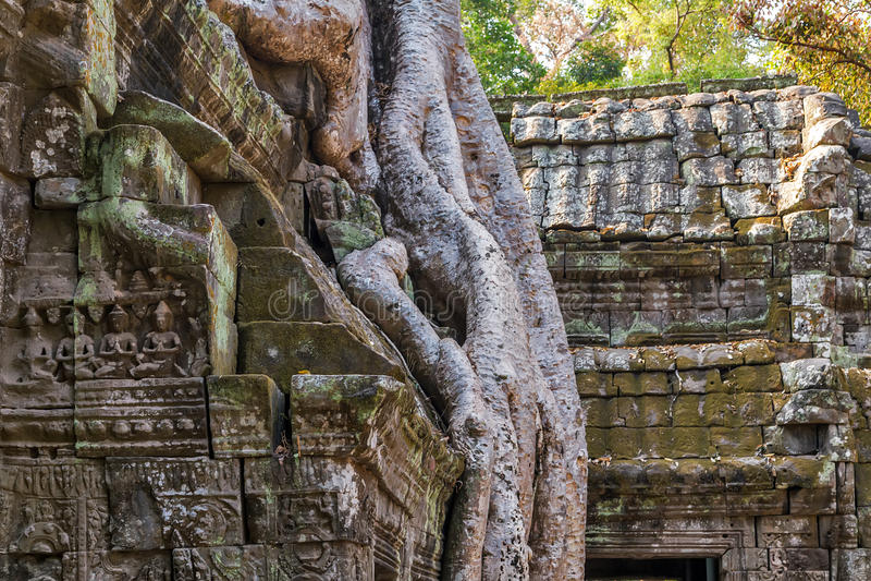 Download Angkor Vat, Complexe De Temple De Khmer, Asie Siem Reap, Cambodge Image stock - Image du fond, extérieur: 56476845