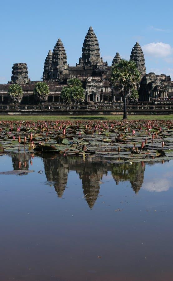 Angkor Wat stockfotografie