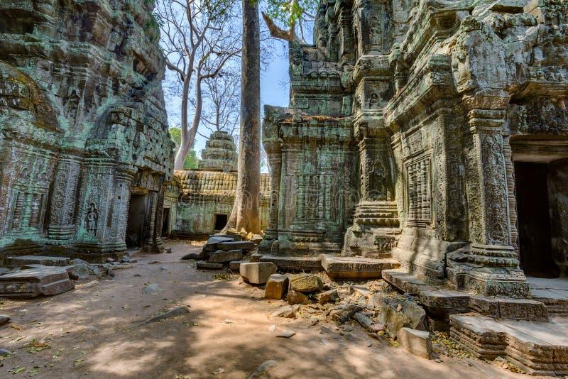 Angkor Wat Cambodge Merci temple bouddhiste antique de Khmer de Prohm images libres de droits