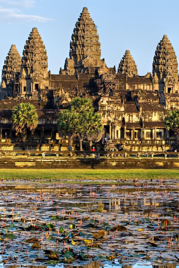 Angkor Wat, Cambogia. fotografia stock