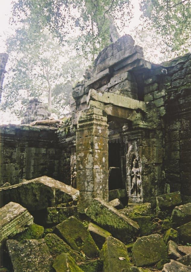 Angkor wat jungle temple cambodia royalty free stock images