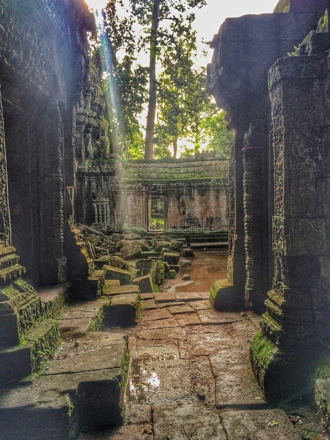Angkor Wat, Kambodża obraz royalty free