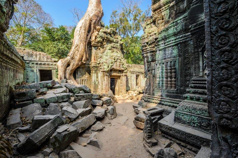 Angkor wat 20 royalty free stock image
