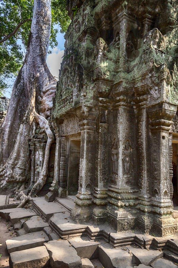 Angkor Wat rujnuje n Kambodża fotografia stock