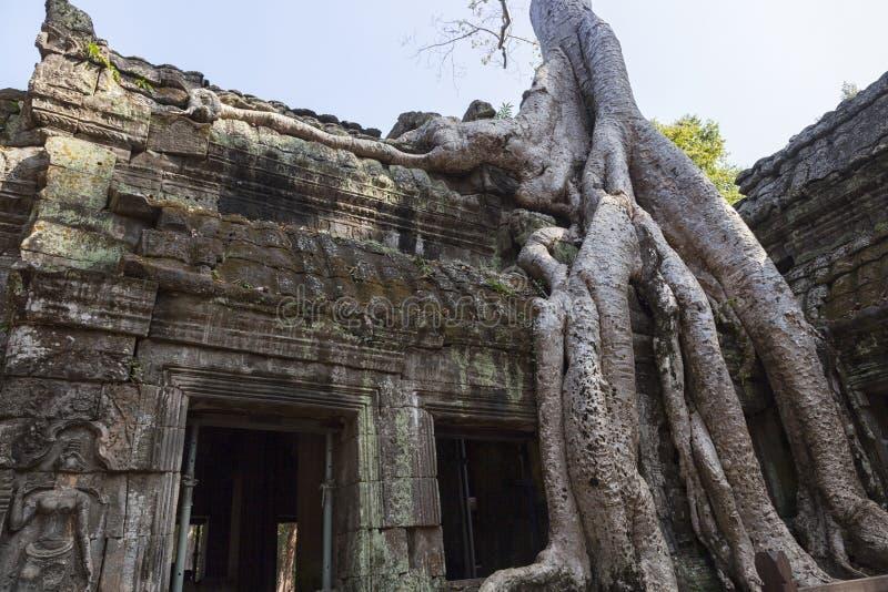Angkor Wat rujnuje n Kambodża zdjęcie royalty free