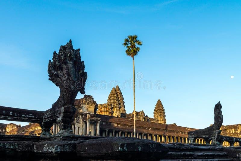 Angkor Wat Siem Reap, Kambodja royalty-vrije stock foto's