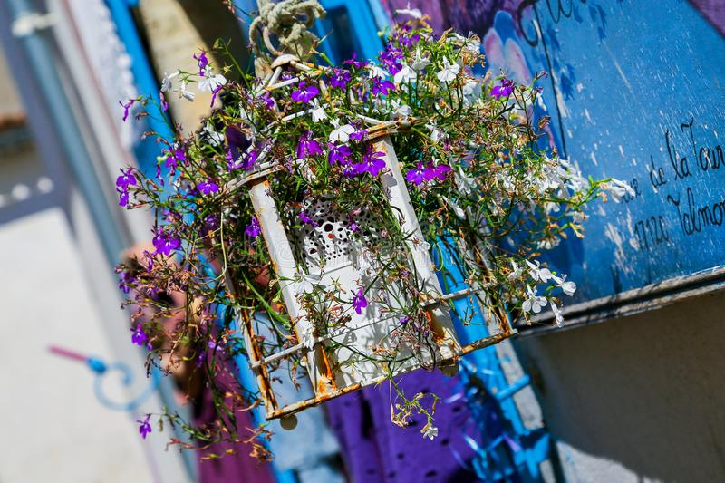 An angled view of a rusted white lantern filled with flowering lobelia against a blue wall. stock images