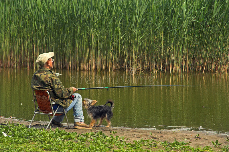 Angler. Patient angler and not so patient dog stock photography