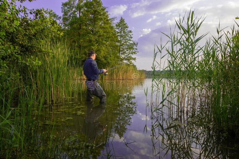 Angler royalty free stock images