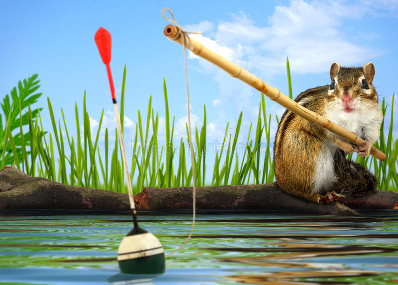 Angler concept stock images