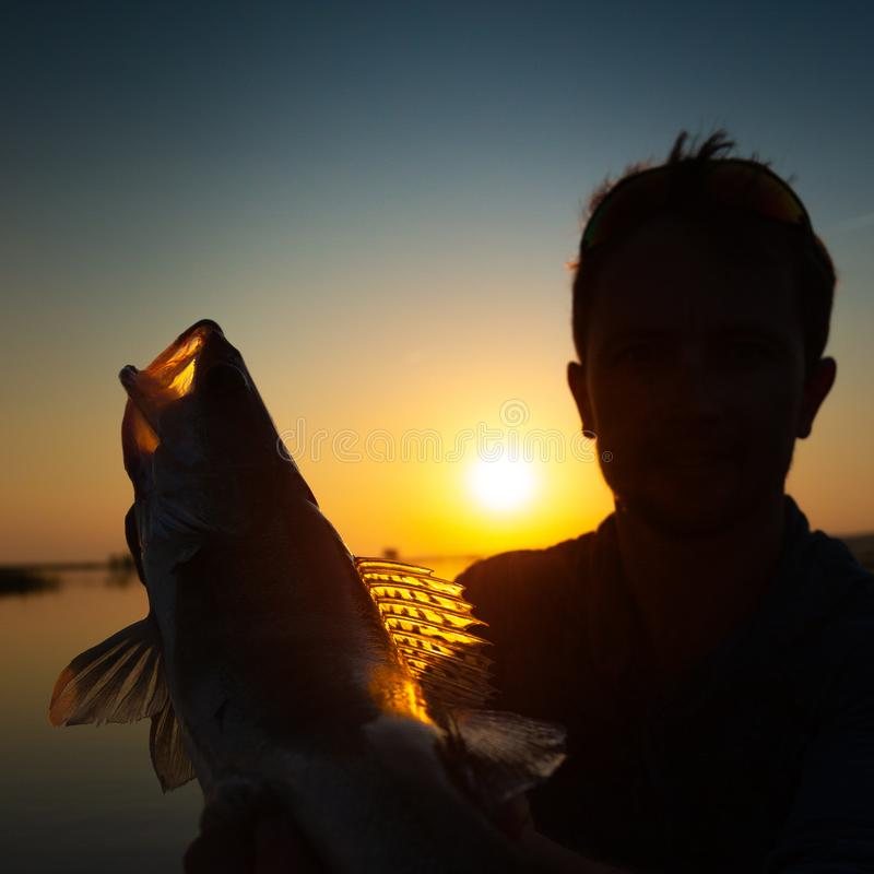 Angler holds the fish royalty free stock images