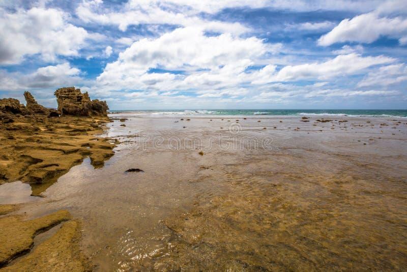 Anglesea Виктория в большой дороге океана стоковая фотография
