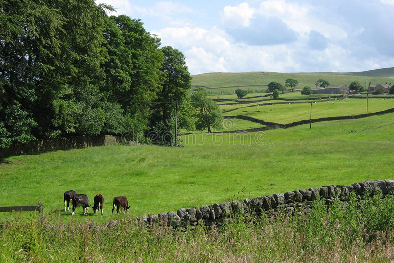 Anglicy Krajobrazu Obraz Stock