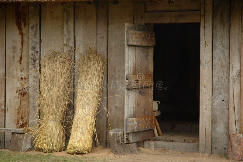 anglosaxon dörr royaltyfri fotografi