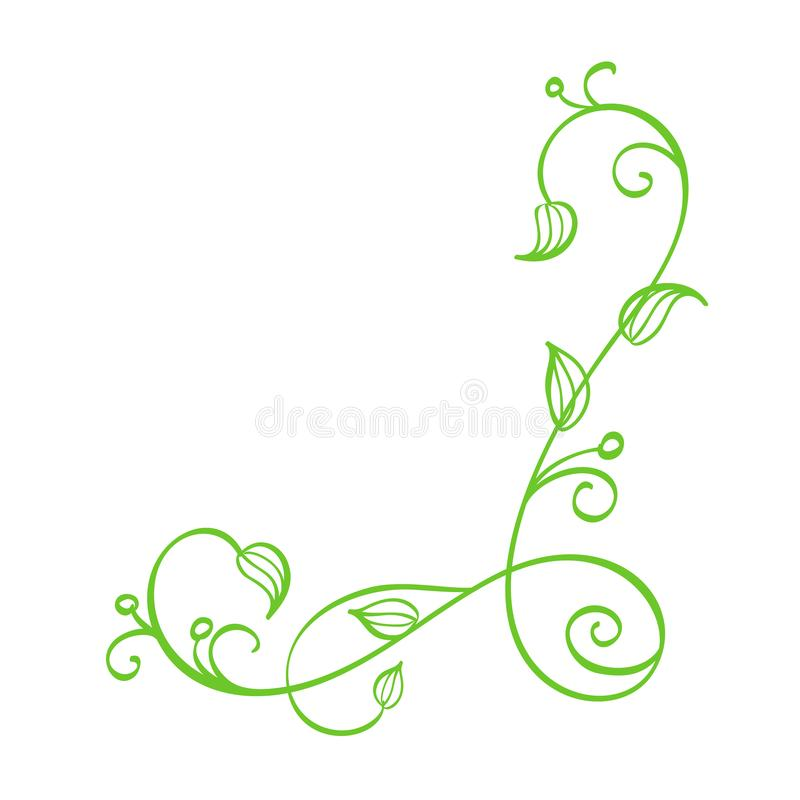 Angolo calligrafico disegnato a mano di vettore verde La primavera fiorisce l'elemento di progettazione Decorazione leggera flore illustrazione vettoriale