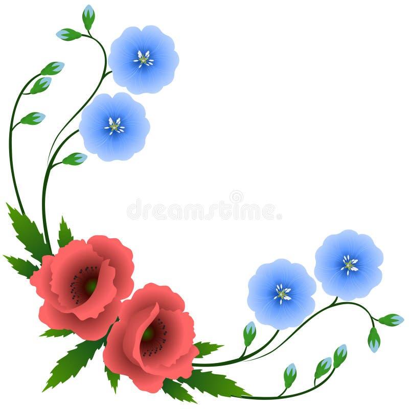 Angolo con i fiori di lino e dei papaveri blu illustrazione vettoriale