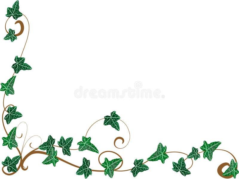 Angolo dall'edera royalty illustrazione gratis