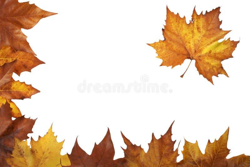 Angolo di autunno fotografia stock libera da diritti
