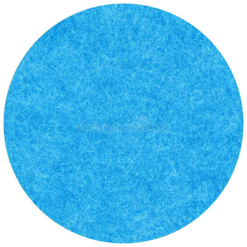 A angorá azul ilustração royalty free