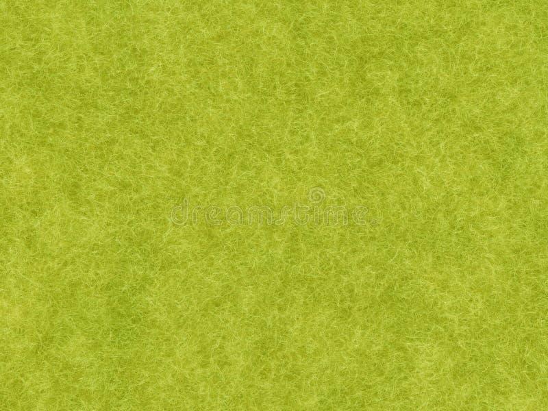 Angorá verde o manuall pintado fotos de stock
