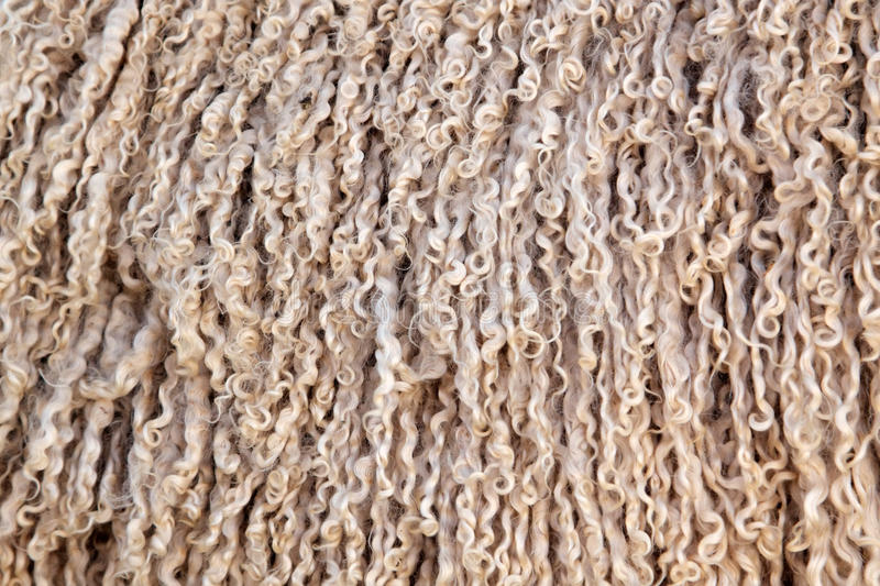 Angoraziege-Wollehintergrund stockfotografie