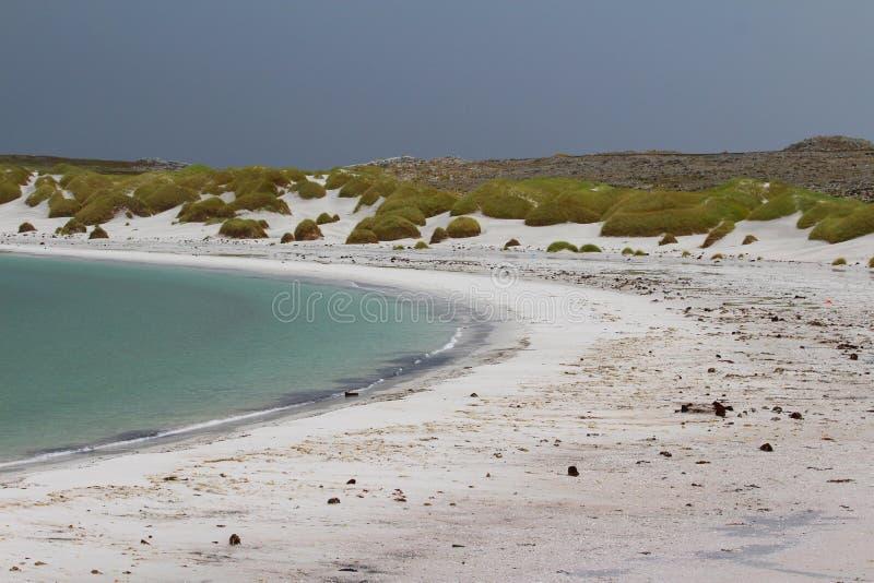 Angra aciganada, Malvinas do leste, Falkland Islands fotos de stock