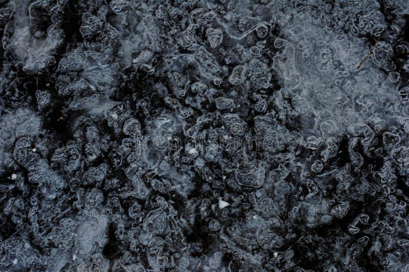 Angra congelada nas madeiras imagens de stock