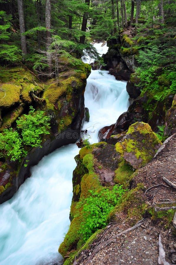 Angra da avalancha. Parque nacional de geleira fotos de stock royalty free