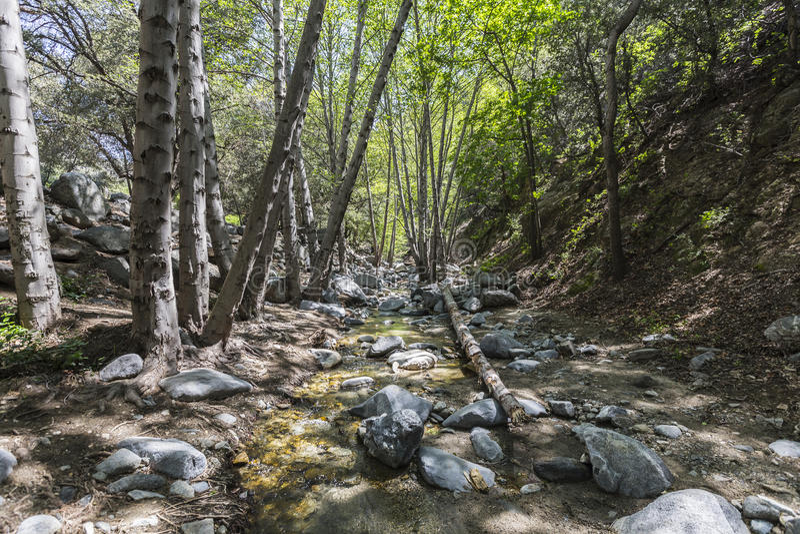 Angra de Arroyo Seco no San Gabriel Mountains imagens de stock