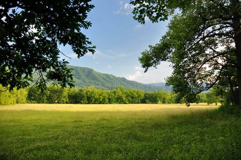 Angra de Cades no parque nacional de Great Smoky Mountains imagens de stock royalty free