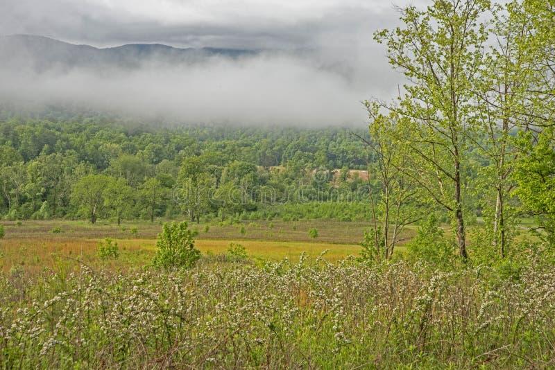A angra de Cades sob a névoa cedo na manhã é bonita foto de stock