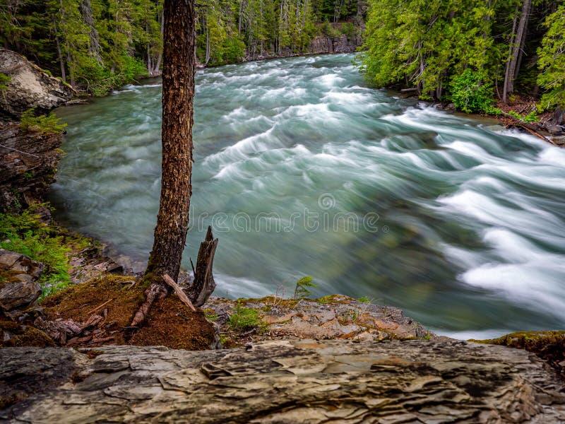 A angra de McDonald do lago no parque nacional de geleira é o assunto desta imagem imagem de stock royalty free