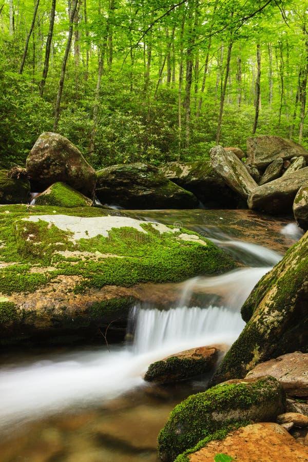 Angra do forte de Boone, North Carolina imagens de stock royalty free