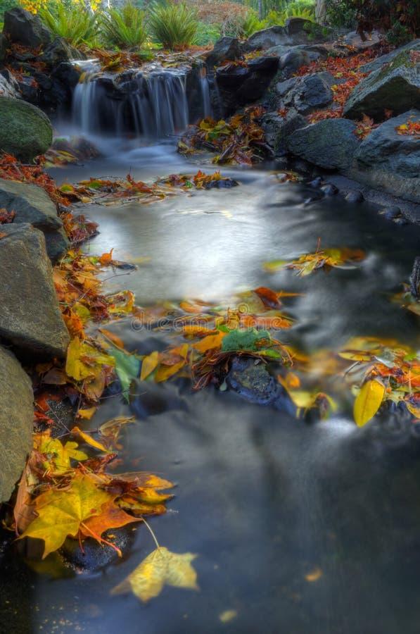 Angra do outono fotografia de stock royalty free