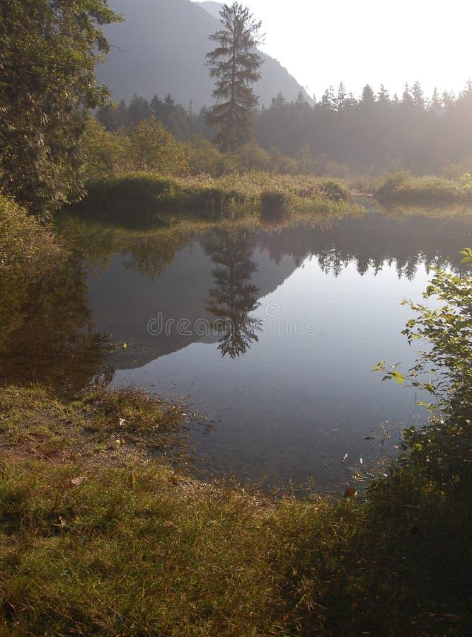 Angra do Widgeon - amanhecer fotografia de stock royalty free
