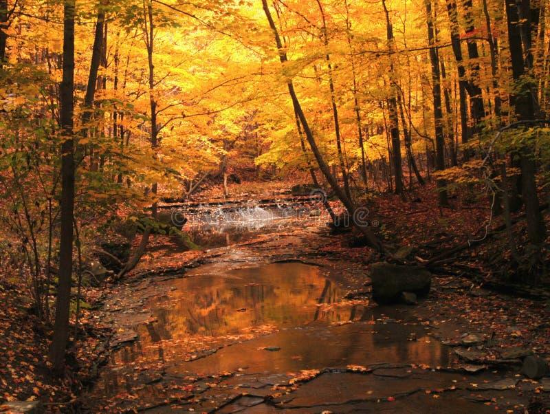 Angra dos funileiros, parque da angra dos funileiros, Ohio fotos de stock