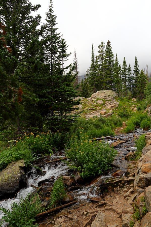 Angra em Rocky Mountain National Park, Colorado de Tyndall fotos de stock royalty free