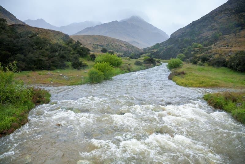 Angra inundada em Nova Zelândia imagens de stock