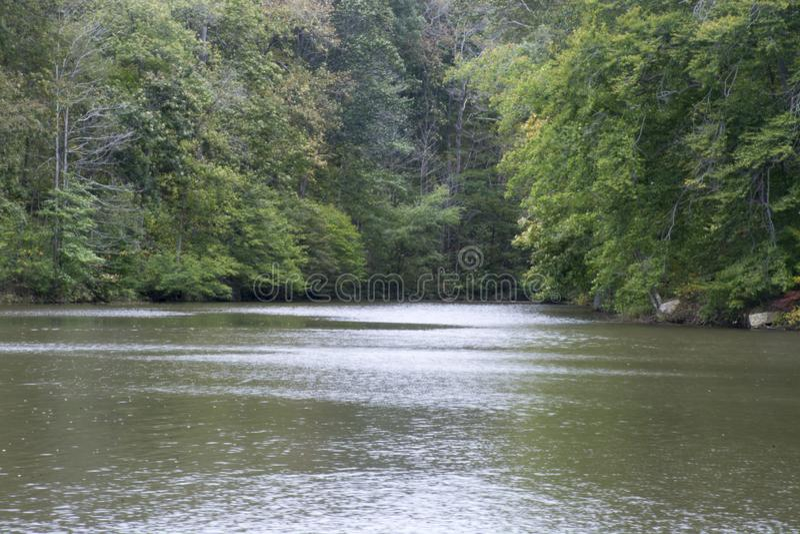 Angra pequena no lago imagens de stock royalty free