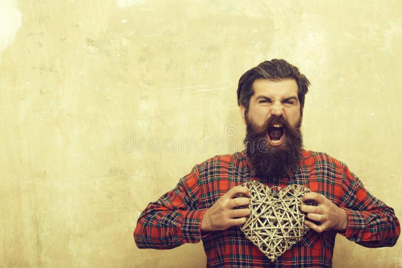 Angry bearded man with long beard holds wicker heart. Angry bearded man, caucasian hipster, with long beard and moustache in plaid shirt holds wicker heart, love stock image