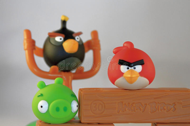 Angry birds. Angry bird team ready to play royalty free stock photo