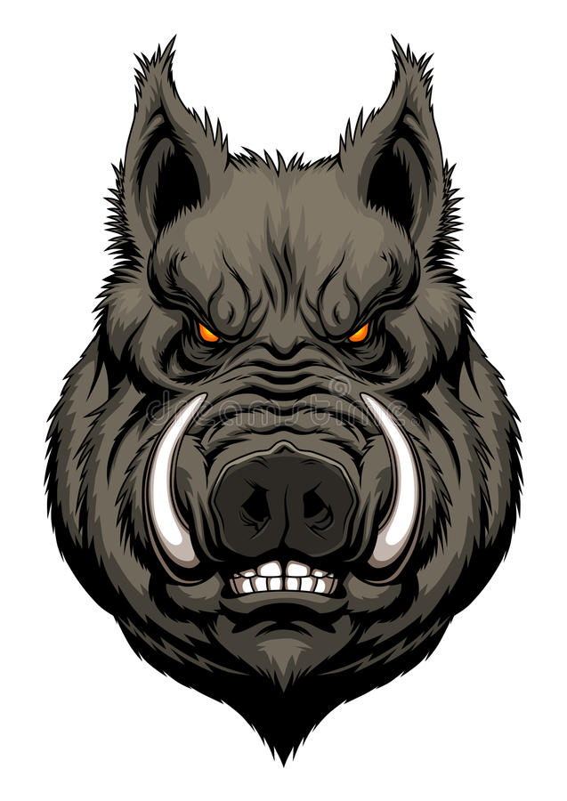 Angry boar head. Mascot on the white background. Vector illustration vector illustration