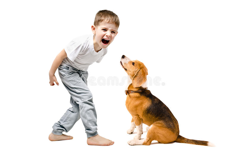 Angry boy screaming at his dog stock images