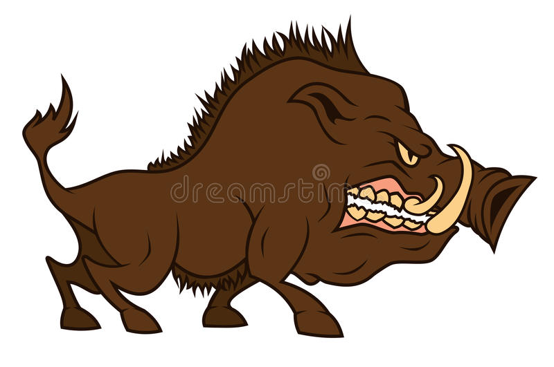 Download An angry cartoon boar stock vector. Image of animal, furious - 24759613