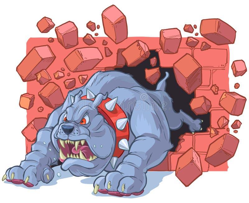 Angry Cartoon Bulldog Mascot Crashing Through Brick Wall. Vector cartoon clip art illustration of a large angry tough bulldog mascot with a spiked collar stock illustration
