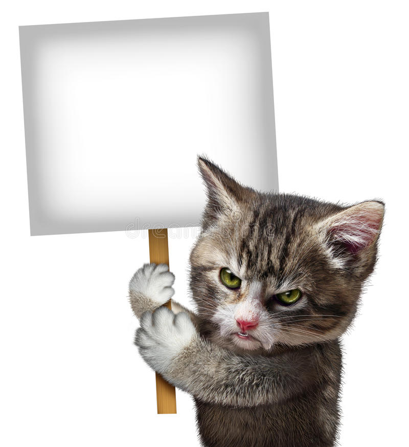 Angry Cat Holding Sign royalty free illustration