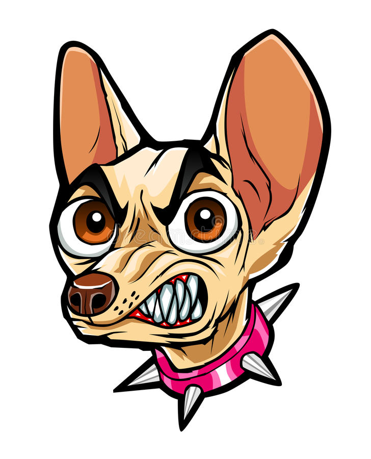 Angry chihuahua. This is cartoon head of angry chihuahua stock illustration